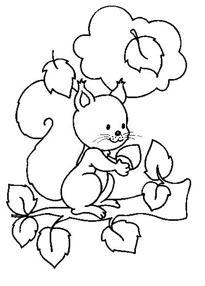 Coloriages animaux sauvages - Coloriages animaux sauvages ...