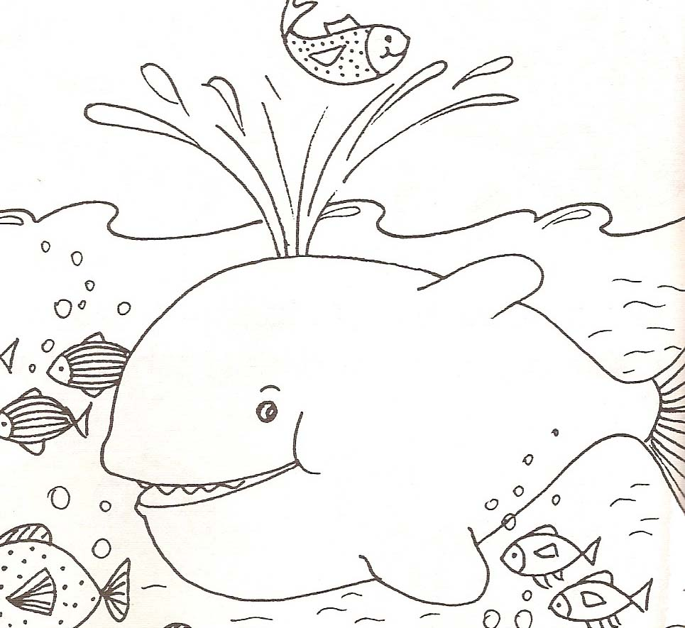 Coloriage Crabe Dauphin.Coloriages Animaux De Mer