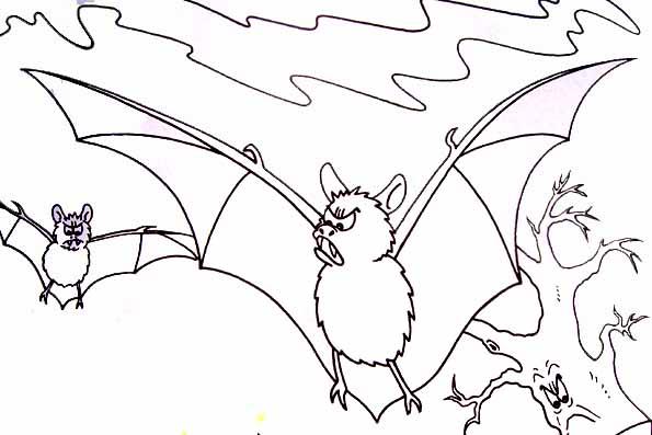 Coloriage chauves souris halloween - Chauve souris halloween dessin ...