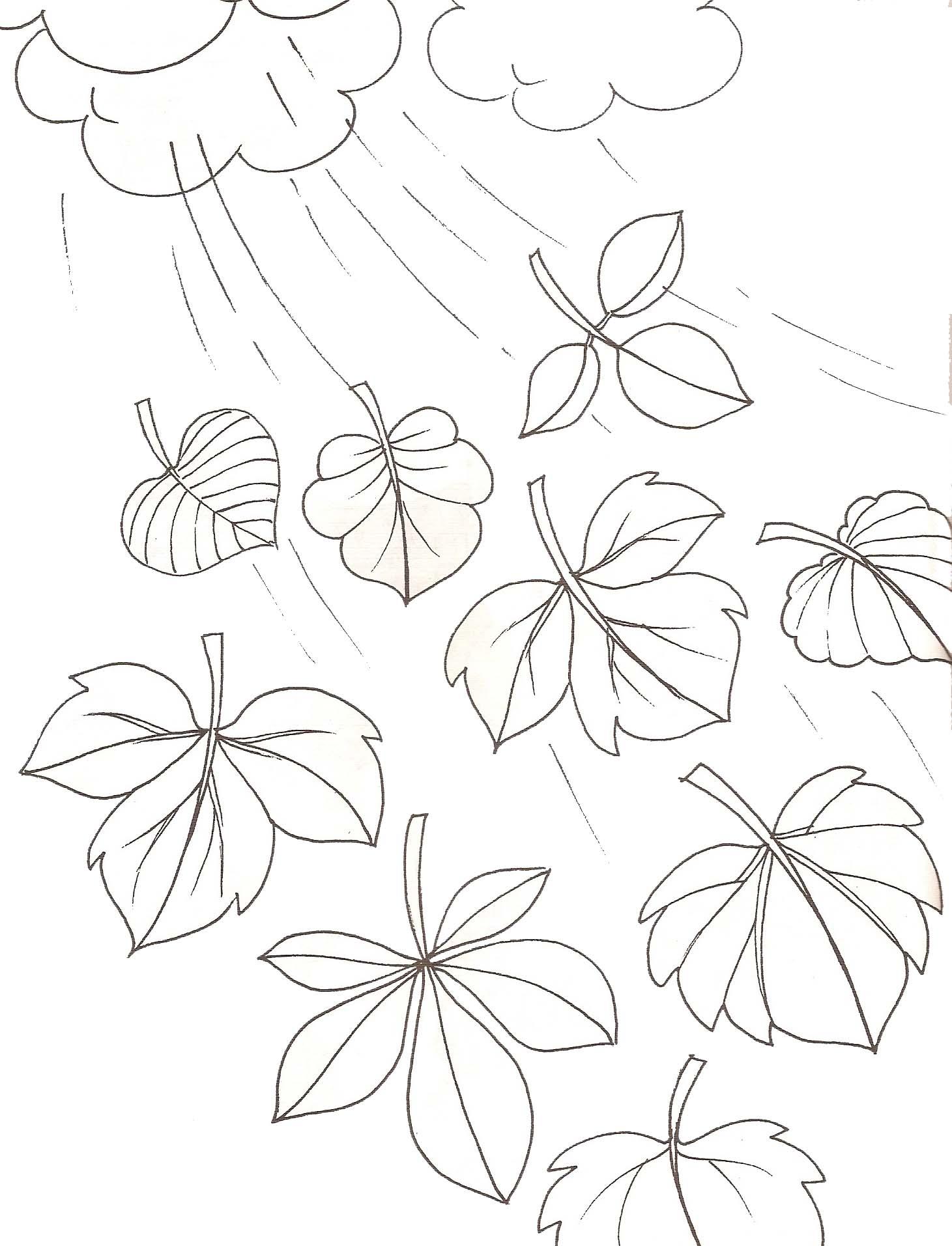 Coloriages plantes - Coloriage feuille d arbre ...