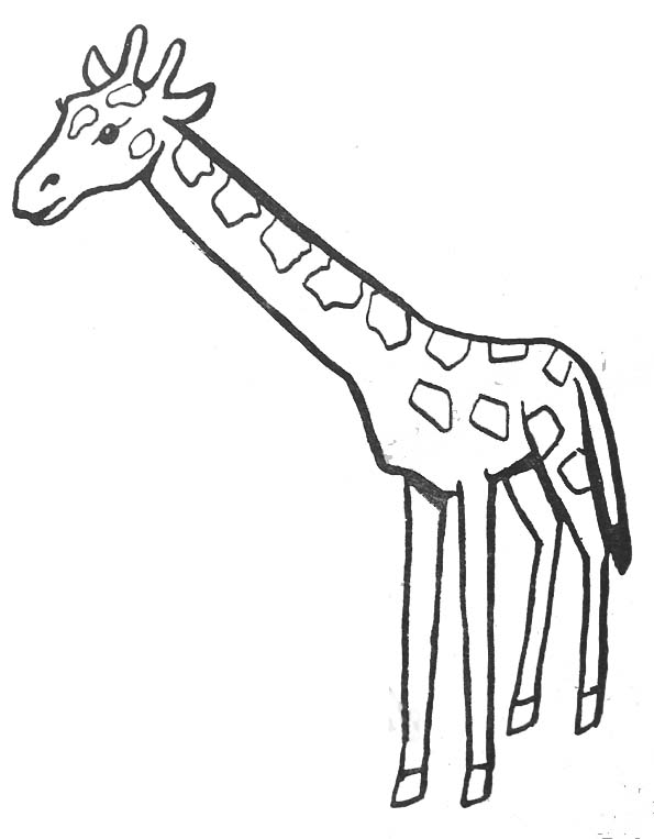Coloriage Girafe Mandala.Coloriages Animaux Exotiques