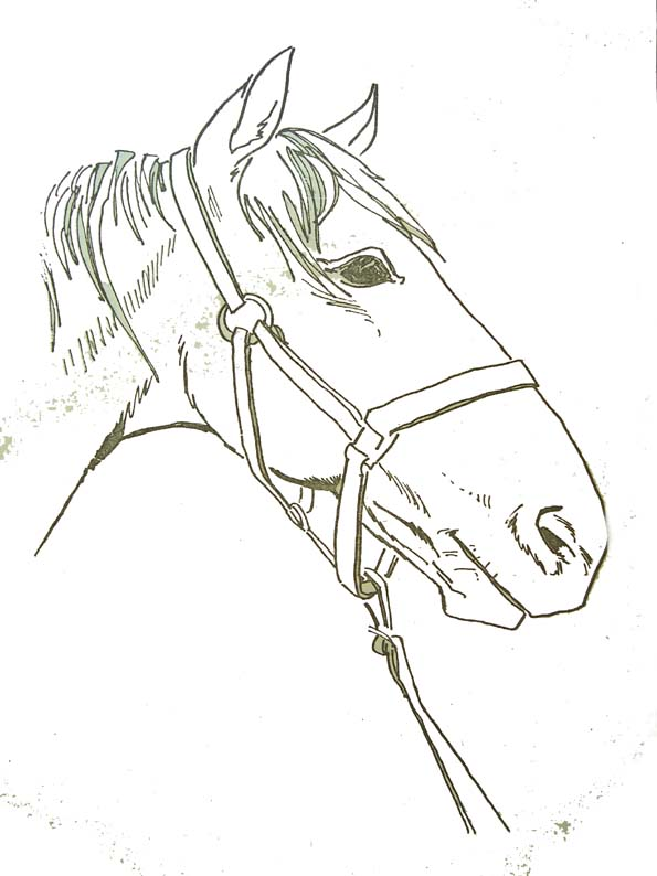 Coloriages animaux - Image dessin cheval ...