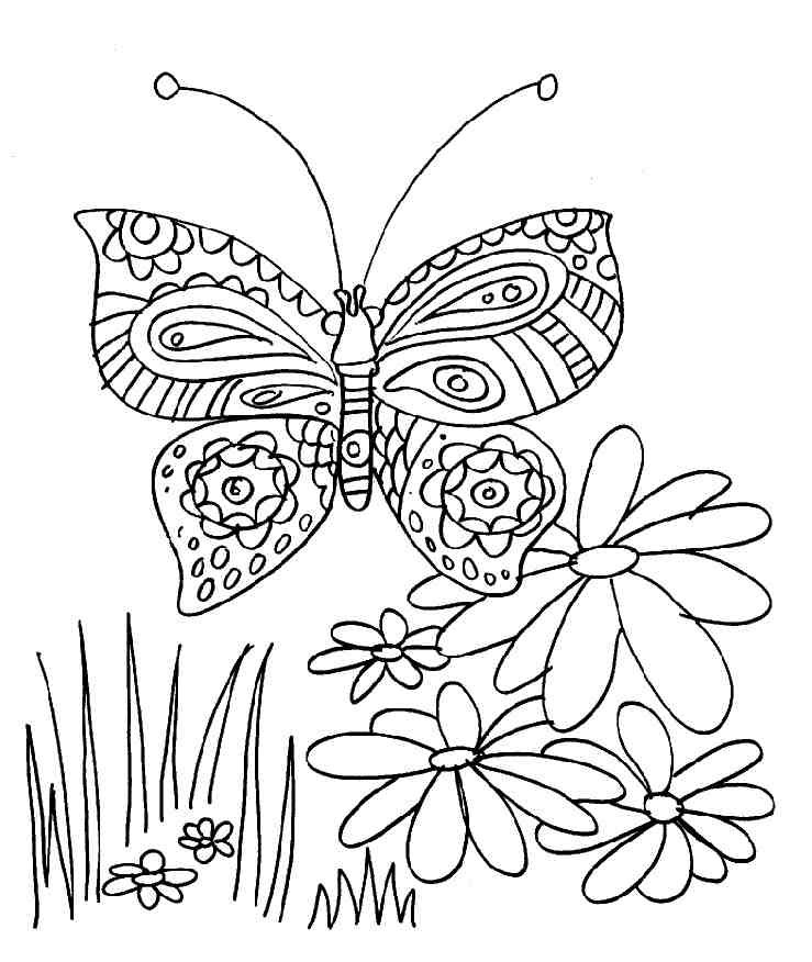 Coloriage papillon et fleurs - Coloriage de papillon ...