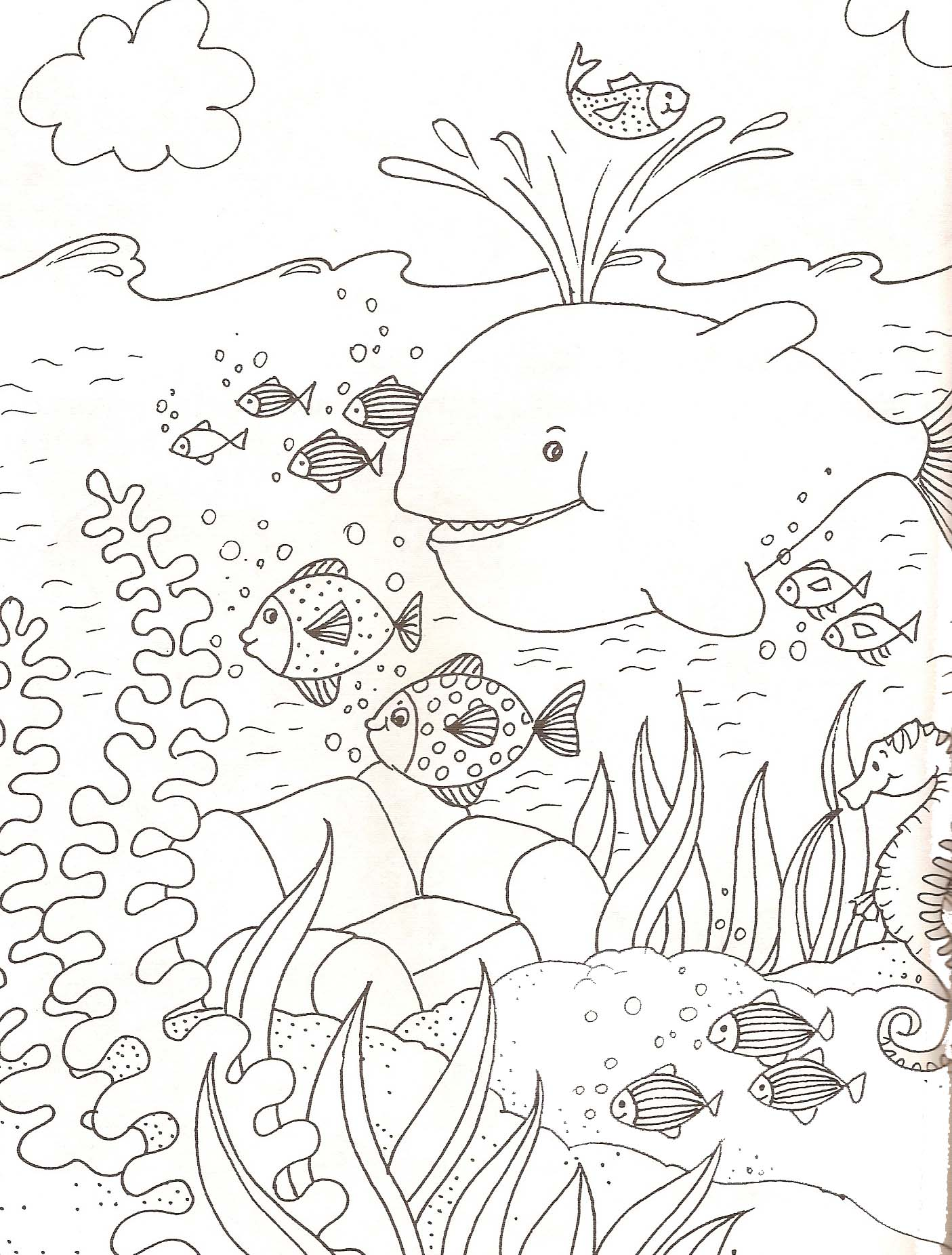 Coloriage animaux marins - Dessins d animaux ...