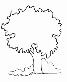 Coloriages arbres - Coloriages arbres ...