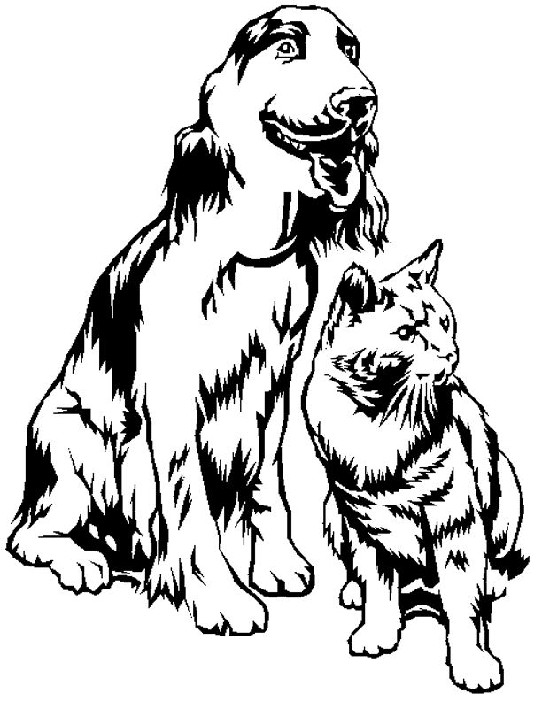 Coloriages animaux domestiques - Dessin tete de chien ...