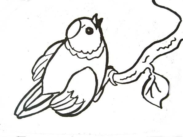 Coloriage Oiseau Sur Arbre.Coloriage Oiseau Pinson
