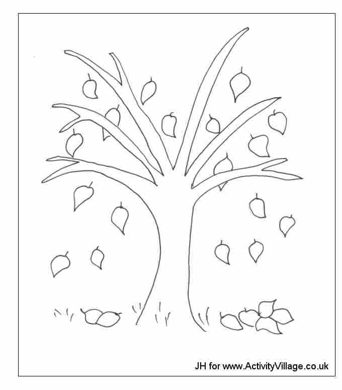 Photo Coloriage Arbre.Coloriage Arbre En Automne