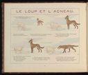 dessins_fables_de_la_fontaine_pour_enfants_-_le_loup_et_l_agneau.jpg