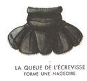 Lecons_de_choses_au_cours_moyen_201_queue_de_l_ecrevisse.jpg