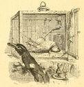 Illustrations_Fables_de_Florian_066_le_bouvreuil_et_le_corbeau.jpg