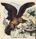 illustrations_couleur_fables_de_la_Fontaine_par_Vimar_-_l_aigle_et_le_hibou.jpg