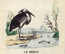 illustrations_couleur_fables_de_la_Fontaine_par_Vimar_-_le_heron.jpg
