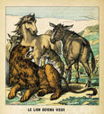 illustrations_couleur_fables_de_la_Fontaine_par_Vimar_-_le_lion_devenu_vieux.jpg