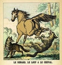 illustrations_couleur_fables_de_la_Fontaine_par_Vimar_-_le_renard_le_loup_et_le_cheval.jpg