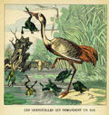 illustrations_couleur_fables_de_la_Fontaine_par_Vimar_-_les_grenouilles_qui_demandent_un_roi_28229.jpg