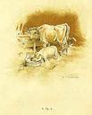 illustrations_fables_de_Lachambaudie_-_la_fermiere_la_vache_et_le_cochon_-.jpg