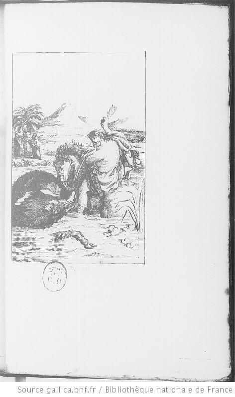 illustrations fables de Phedre - Le cheval et le sanglier