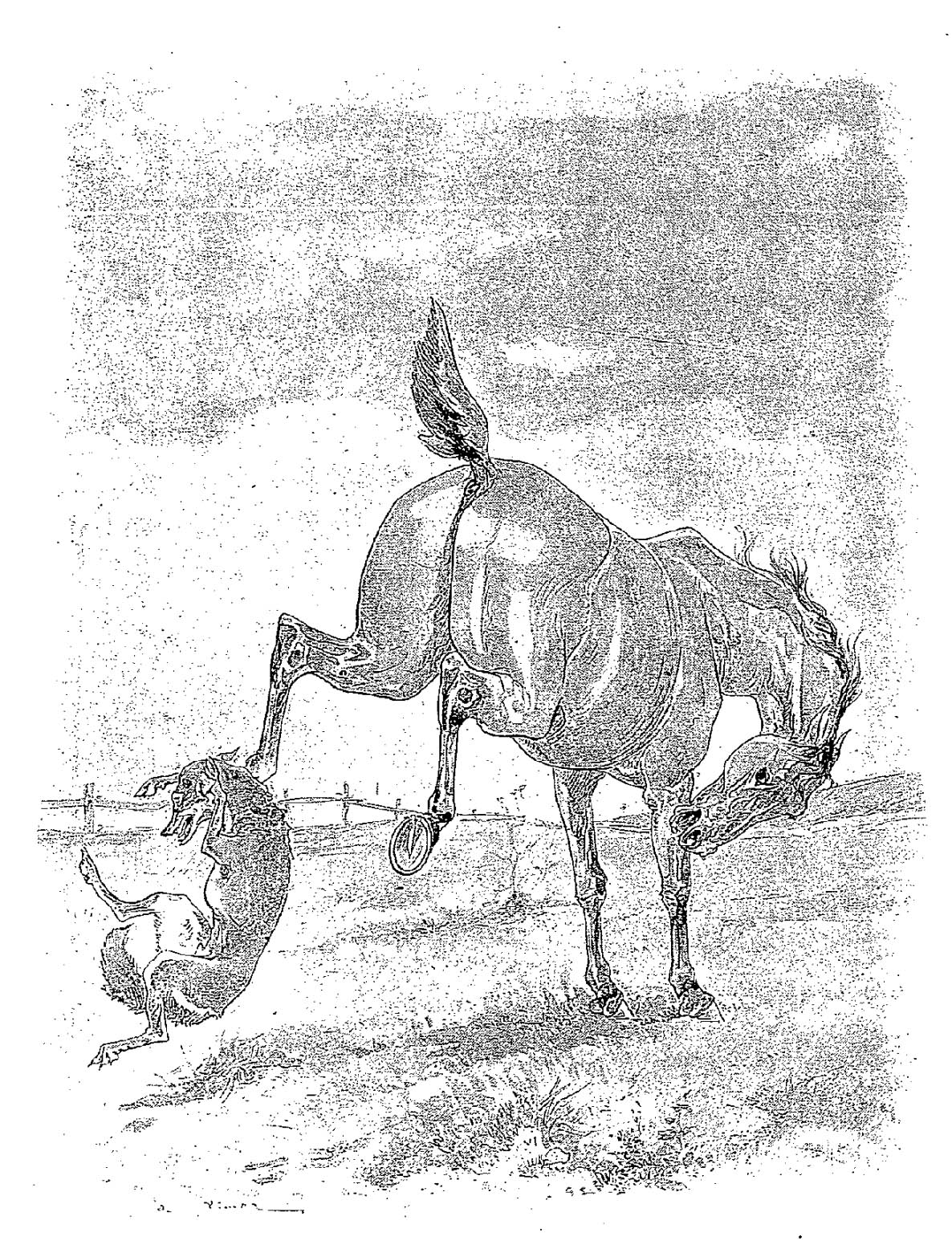 illustrations fables de la Fontaine par Vimar - le cheval et le loup