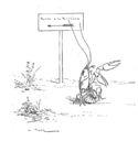 illustrations_fables_de_la_Fontaine_par_Vimar_-_l_ecrevisse_et_sa_fille_-.jpg