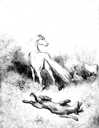 illustrations par Dore des fables de la Fontaine - le cheval et le loup