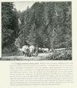 Geographie_de_la_France_en_1900_-_089_L_agriculture_-_Exploitation_de_la_foret_des_Fauges_haute_vallee_de_l_Aude.jpg