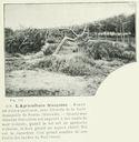 Geographie_de_la_France_en_1900_-_089_L_agriculture_-_Foret_de_pins_rabougris_Soulac_Gironde.jpg