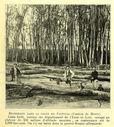 Vues_de_la_France_en_1900_-_2321_bucherons_dans_la_foret_de_Freteval_departement_du_Loir-et-Cher.jpg