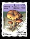 timbre-afghanistan-champignon-clitocybe-inversa.JPG