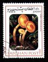 timbre-afghanistan-champignon-kuehneromyces-mutabilis.JPG