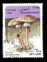 timbre-afghanistan-champignon-macrolepiota-procera.JPG