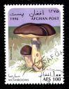 timbre-afghanistan-champignon-suillus-luteus.JPG